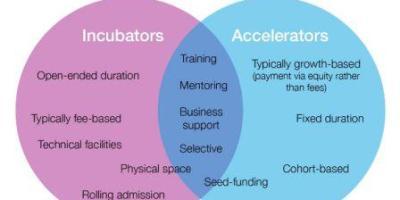 Startups accelerator Vs Incubator